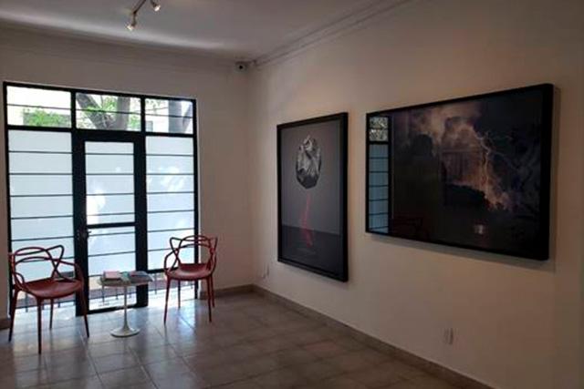 galeria, ricardo reyes, cdmx, obra